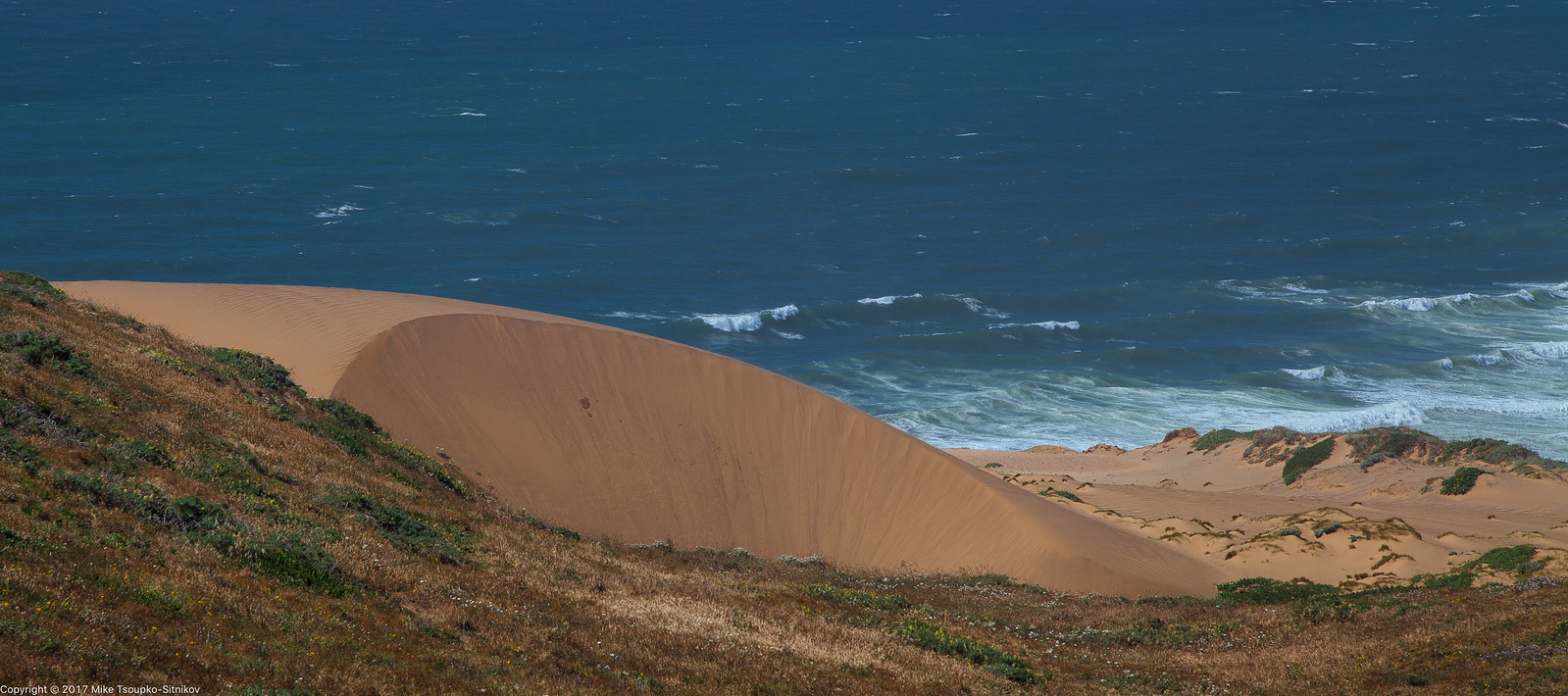 Dunes at Point Reyes Lighthouse
