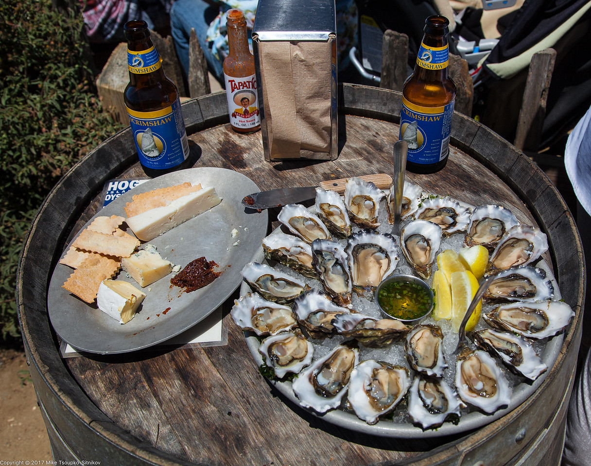 Cheese and Oysters at Hog Island Oyster Company