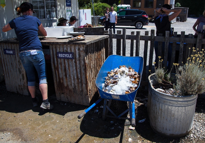 Cleaning up at Hog Island Oyster Company Restaurant
