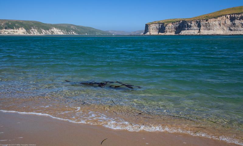 Limantour Estero at Drakes Bay