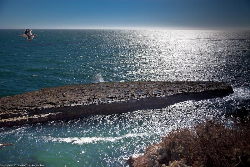 Coastal View in Wilder Ranch State Park