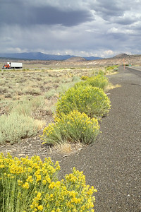 Stop along CA 395, near Crowley Lake