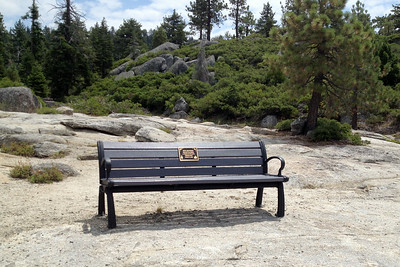 Bench at Donnell Vista