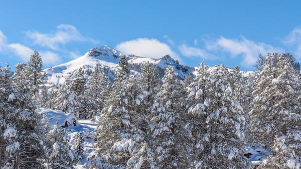 Pickett Peak