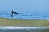 Humpback whale, Oceano Dunes Beach CA (6)