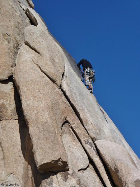 'Tickling Terra',  'Terradactyl Rock' that is