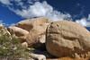 'Boulder Buddies' II