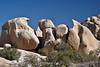 'Terradactyl Chicks' rock - 'The Hatching'