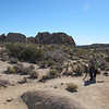 Skull Rock hike