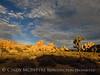 Hidden Valley Trail, Joshua Tree NP CA (15)