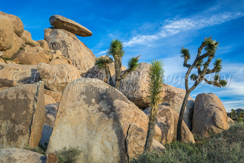 Jumbo rocks in Joshua Tree National Park, California, USA.