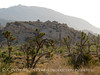 Barker Dam Trail, Joshua Tree NP CA (3)