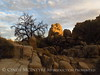 Hidden Valley Trail, Joshua Tree NP CA (39)
