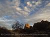 Hidden Valley Trail, Joshua Tree NP CA (40)