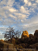 Hidden Valley Trail, Joshua Tree NP CA (37)