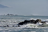 Big waves, Estero Bluffs CA (1)