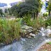 Kyoto Gardens - 16