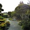 Authentic Japanese garden