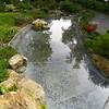 Kyoto Gardens - 14