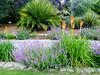 Arboretum - 11
