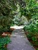 Arboretum - 8