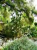 Arboretum - 2