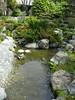 Japanese Garden - 15