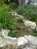 Japanese Garden - 16