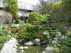 Japanese Garden - 14