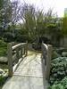 Japanese Garden - 13