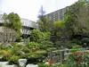 Japanese Garden - 12