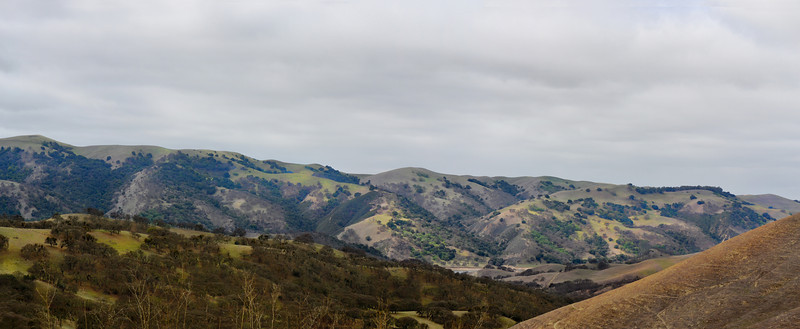 Del Valle, looking towards hills on the west side.