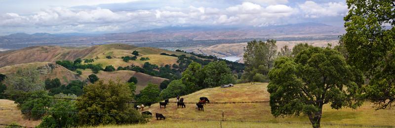 156 - San Antonio Reservoir viewed from Sunol-Ohlone Wilderness Trail (EBRPD)
