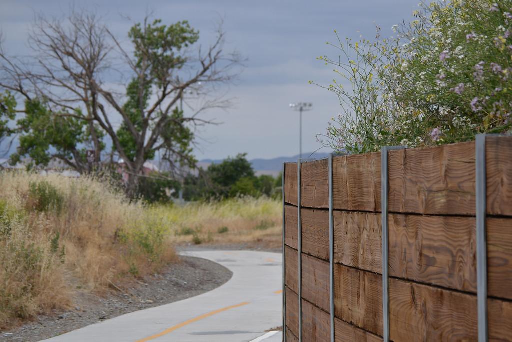 Bike Path - Concannon underpass