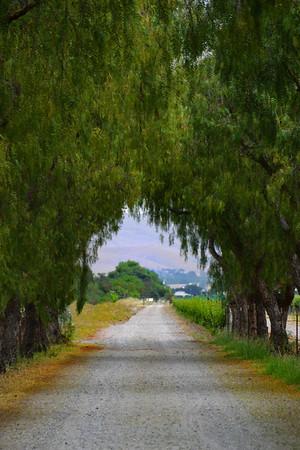 Road to Retzlaf