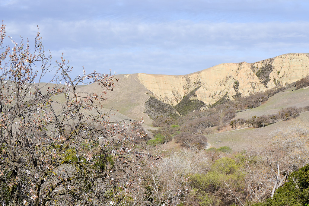 Del Valle Arroyo Road Trailhead