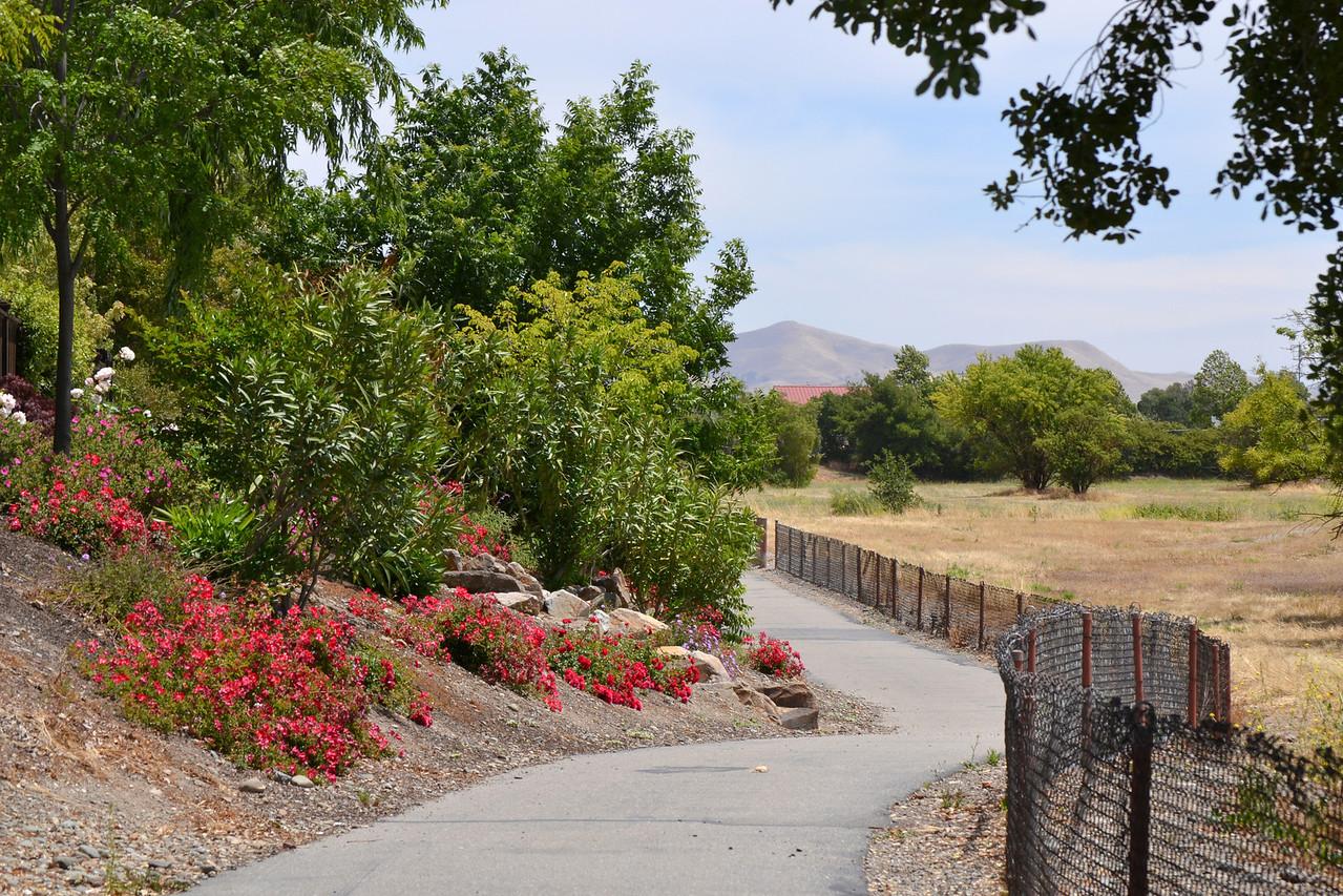 Bike Path.... approaching Robertson Park area.