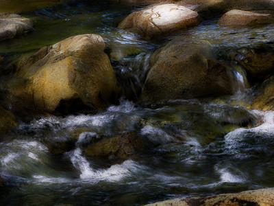 (26) Arroyo Mocho Creek