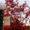 Lodi California, Lodi Sign with Fall Foliage
