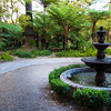 Lodi Califronia, Wine & Roses Resort Garden