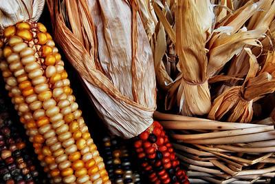Indian Corn!