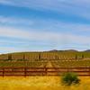 Lompoc California, Sta. Rita Hills