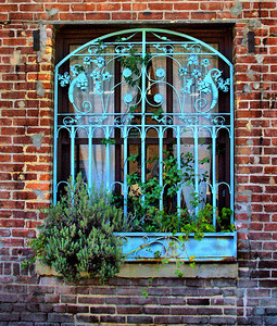 Pasadena Window