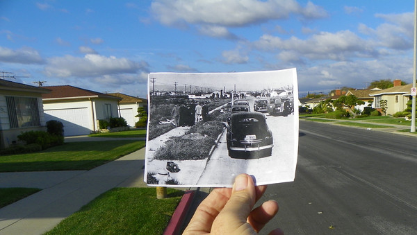 Black Dahlia, Then & Now