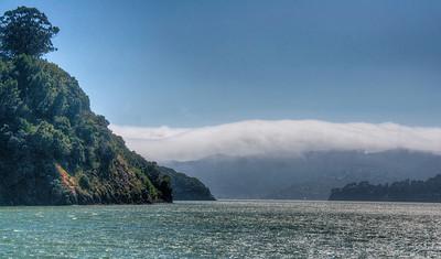 san-francisco-bay-fog