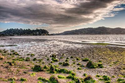 california-low-tide