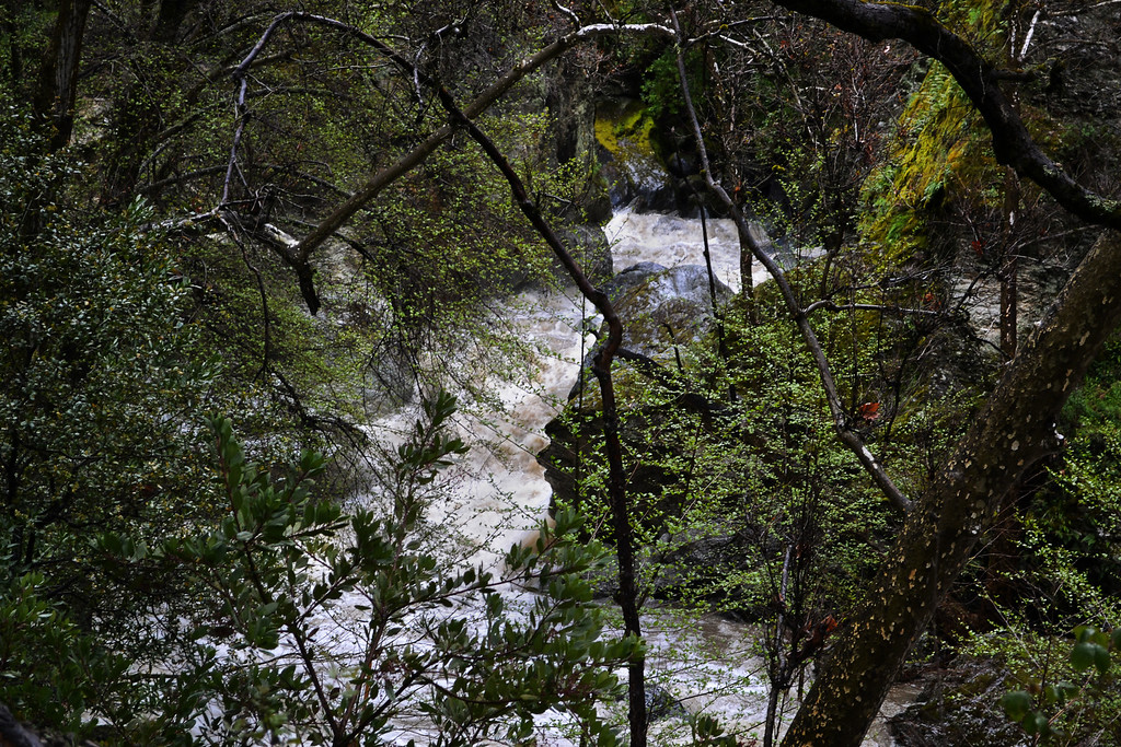 88 - Little Yosemite Creek.     EBRP - Sunol Regional Wilderness, Sunol, CA