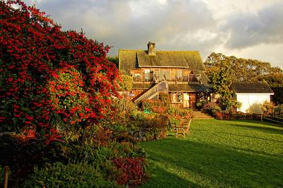mendocino-garden-house-3