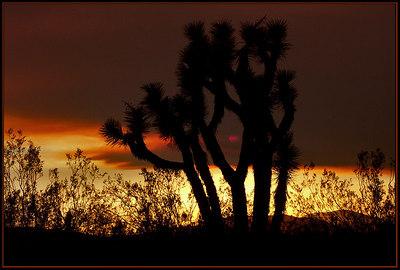 Smokey Sunset #3