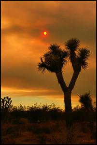 Smokey Sunset #4